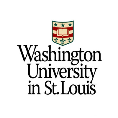 washington university of st. louis application essay